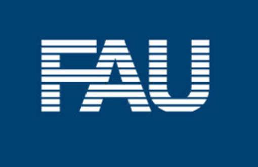 web_web_FAU_negativ_FAU_Ohne-Text.jpg